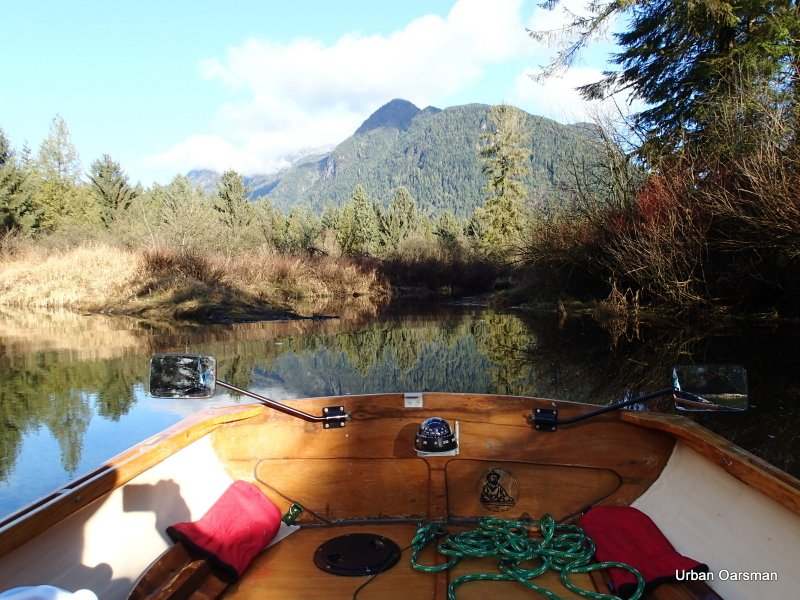 Widgeon Creek High Tide Row