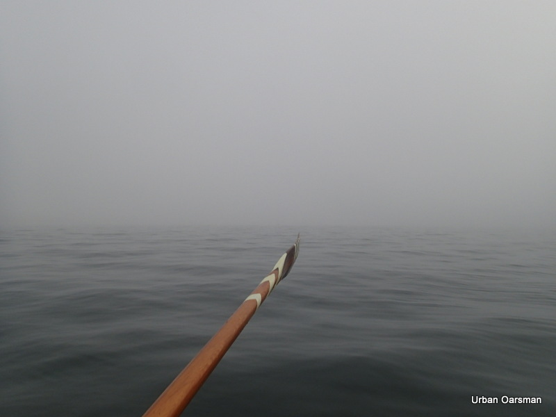 The Urban Oarsman...The fog row