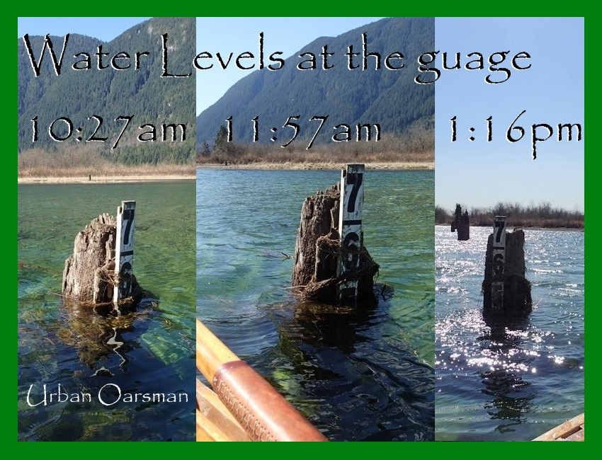 Waterlevels at the guage