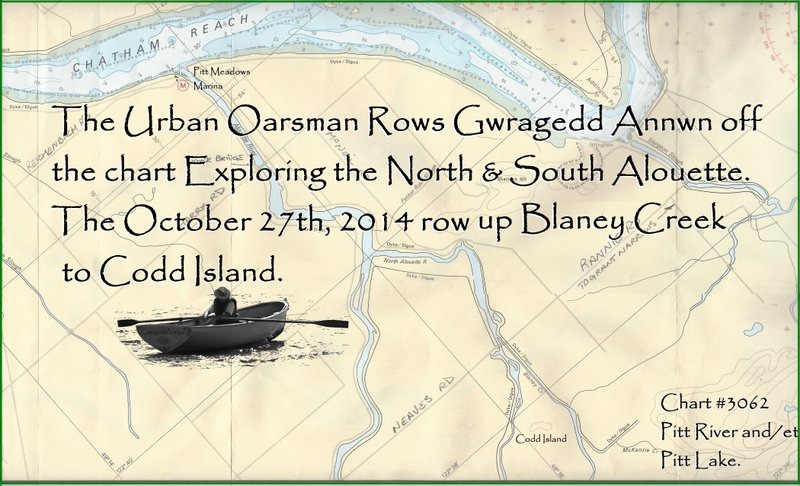 The Urban Oarsman Explores the Alouette River