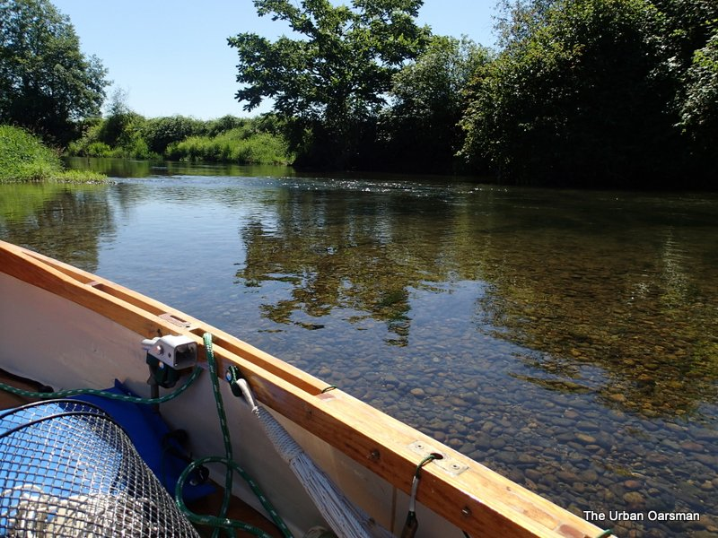 The Urban Oarsman rows Gwragedd Annwn off the chart Exploring the Alouette, past the Neaves Road Bridge