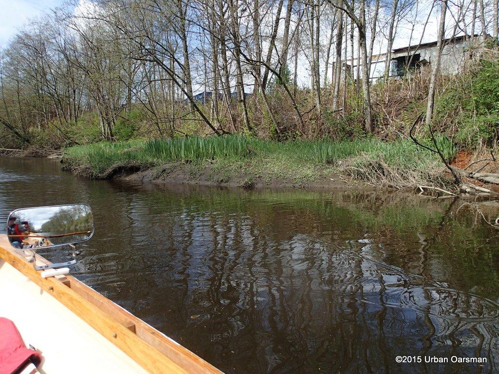 Brunette River/Sapperton Channel Row