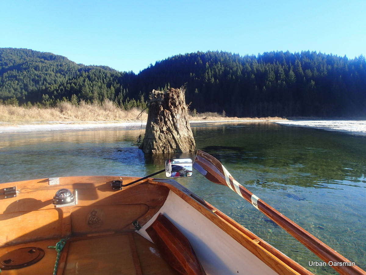 The Urban Oarsman Rows Widgeon Creek, Both Forks