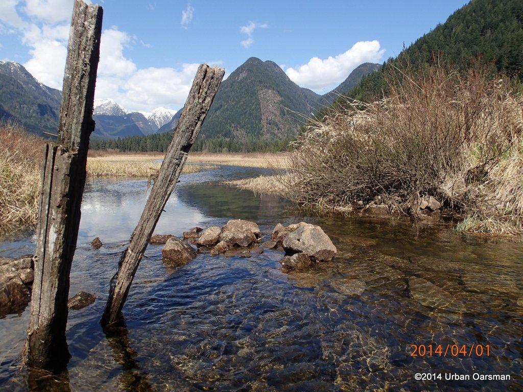 Widgeon Creek High Water Row
